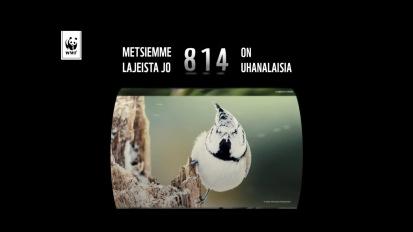 WWF Suomi – LahjaMetsälle